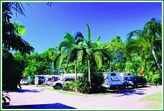 Tropical Hibiscus Caravan Park - Casino Accommodation