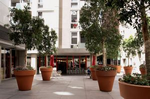 Tribeca Serviced Apartments - Casino Accommodation