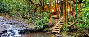 The Mouses House - Rainforest Retreat - Casino Accommodation