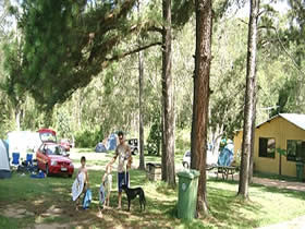 Glasshouse Mountains Holiday Village - Casino Accommodation