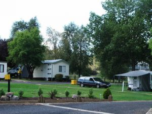 Poplar Caravan Park - Casino Accommodation