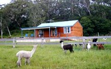 Moorallie Cottage Farm Stay - Casino Accommodation