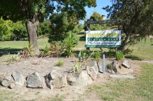 Adelong Golden Gully Caravan Park - Casino Accommodation