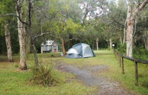 Kylies Hut walk-in campground - Casino Accommodation