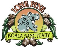 Lone Pine Koala Sanctuary - Casino Accommodation