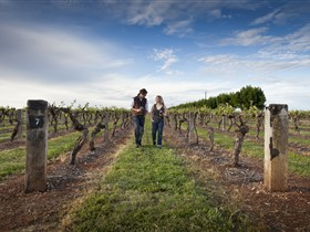 Coonawarra Wineries Walking Trail - Casino Accommodation