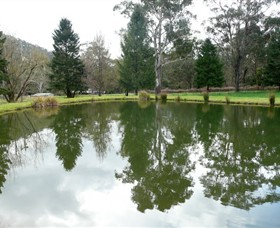 Mountain Fresh Trout and Salmon Farm - Casino Accommodation