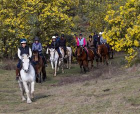 Burnelee Excursions on Horseback - Casino Accommodation