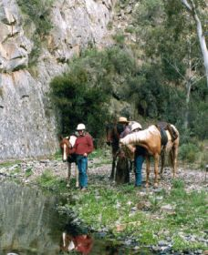 Yarramba Horse Riding - Casino Accommodation