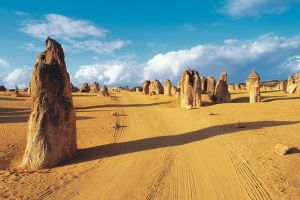 Pinnacles Desert Koalas and Sandboarding 4WD Day Tour from Perth - Casino Accommodation