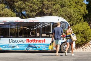 Rottnest Island Tour from Perth or Fremantle - Casino Accommodation