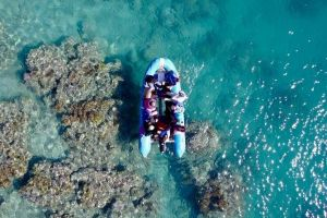 Glass-bottom boat tour with Whitehaven Beach - Casino Accommodation