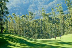 Bonville Golf Resort - Casino Accommodation