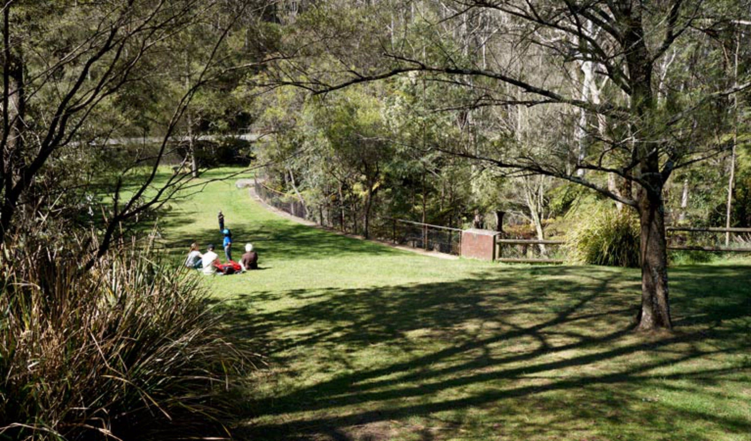 Leura Cascades picnic area - Casino Accommodation