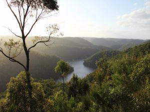Berowra Valley National Park - Casino Accommodation