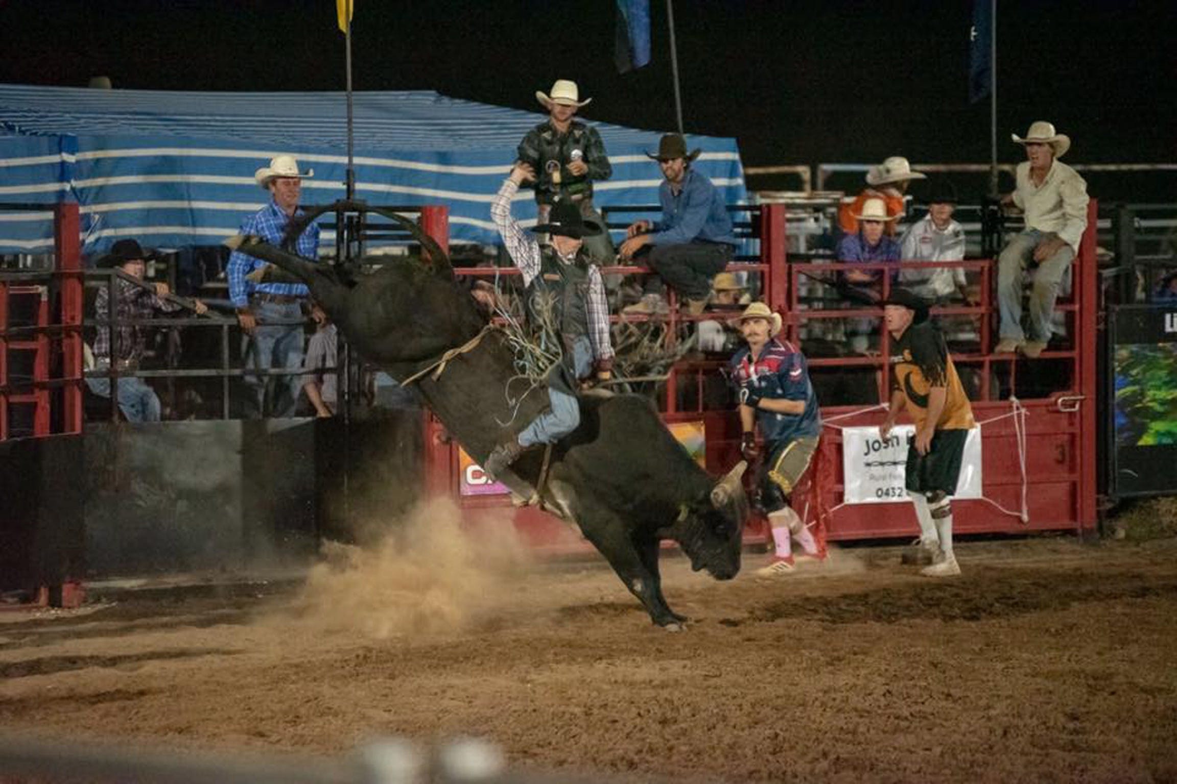 Black Opal Bull and Bronc Ride - Casino Accommodation