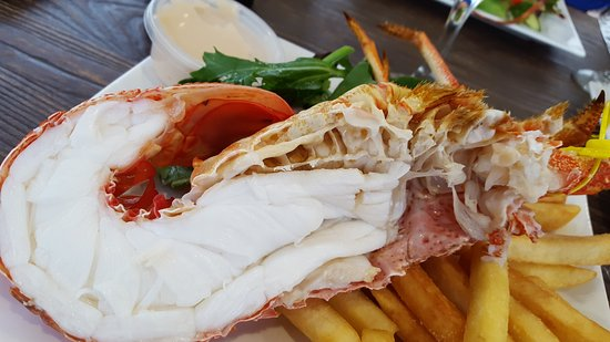 Tasmanian Gourmet Seafoods - Casino Accommodation
